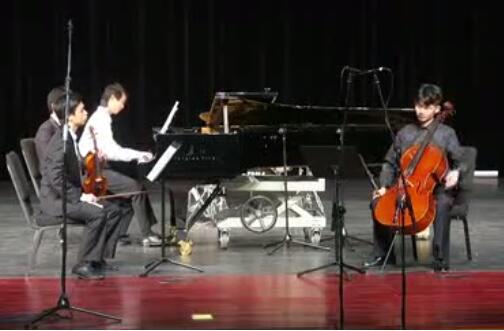 布拉姆斯B大调第一钢琴、小提琴与大提琴三重奏 Op.8第一乐章 钢  琴:林子建  小提琴:李仕铭  大提琴:罗燏     艺术指导:黄海昌